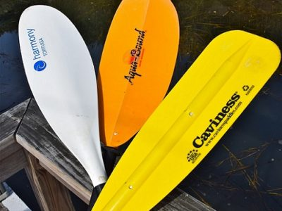 Treasure Cove Resort Marina Paddles